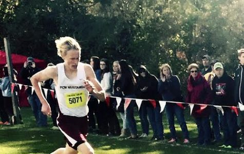 Ellens to run at State